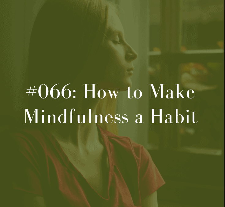 066 How to Make Mindfulness a Habit